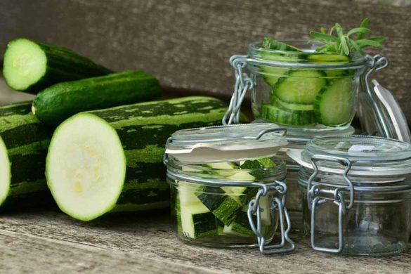 coltivazioni zucchine