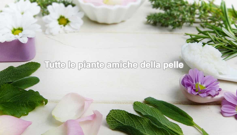 piante-alleate-della-pelle
