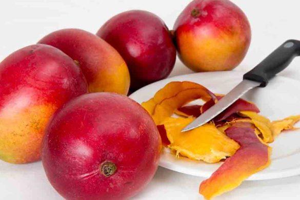 mango frutto esotico