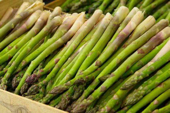 asparago, asparagi