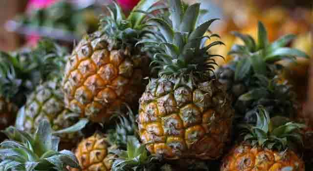 ananas frutti esotici
