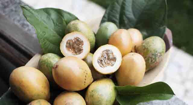 maracuja o frutto della passione frutti esotici